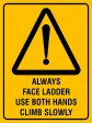 ALWAYS FACE LADDER USE BOTH HANDS CLIMB SLOWLY, 300MM X 225MM X 5MM THICK